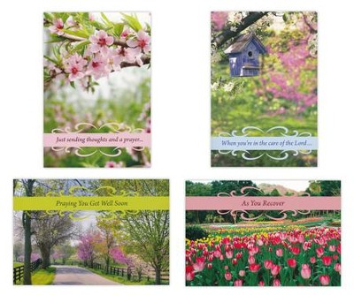 Get Well, Springtime Cards, Box of 12  -