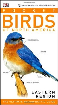 American Museum of Natural History: Pocket Birds of North America, Eastern Region  -     By: DK