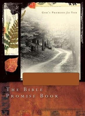 The Bible Promise Book - NLV Gift Edition - eBook  -     By: Mark Fackler