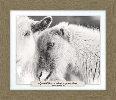 I Found the One Whom My Soul Loves, Song of Solomon 3:4, Goat Farm, Framed Art  -