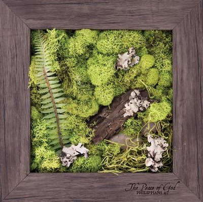 The Peace of God Biophilic Framed Art  -