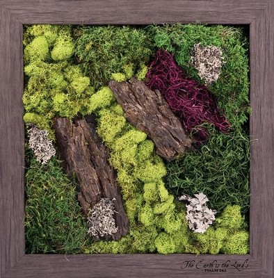 The Earth is the Lord's Biophilic Framed Art  -
