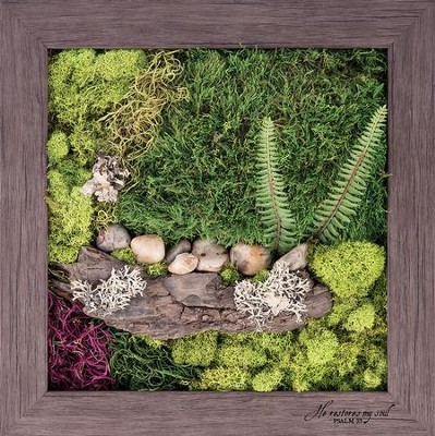 He Restores My Soul Biophilic Framed Art  -
