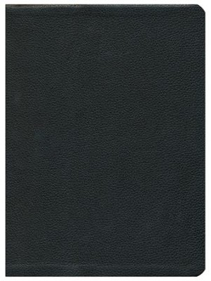 The Message, Large Print Premium Leather, Black   -     By: Eugene H. Peterson