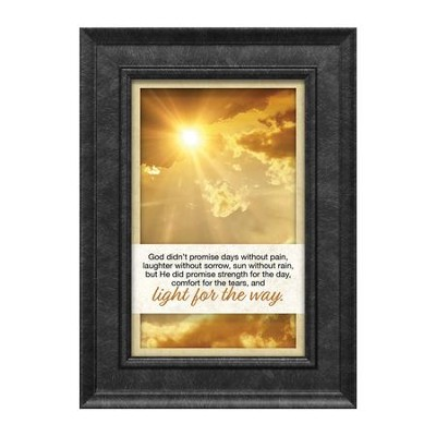 God Didn't Promise Days Without Pain Framed Art  -