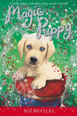 Snowy Wishes - eBook  -     By: Sue Bentley     Illustrated By: Angela Swan
