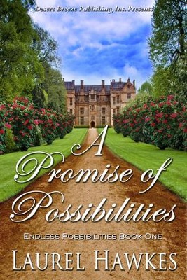 Endless Possibilities Book One: A Promise of Possibilities - eBook  -     By: Laurel Hawkes