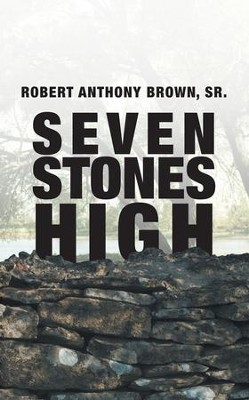 Seven Stones High - eBook  -     By: Robert Anthony Brown Sr.