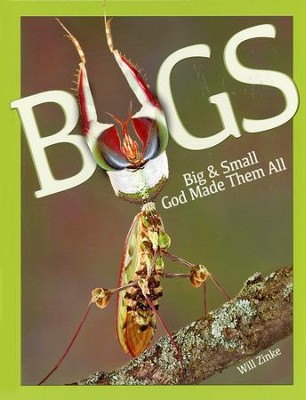 Bugs: Big & Small God Made Them All  -     By: William Zinke