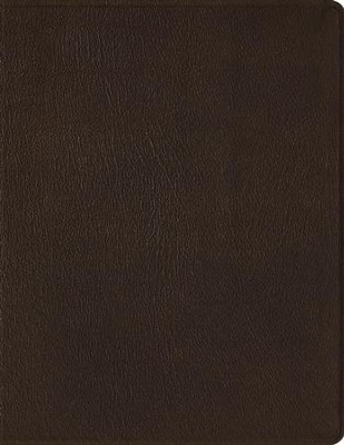 ESV 2-Column Journaling Bible, Mahogany Brown - Genuine Leather    -