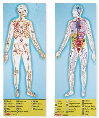 The Human Anatomy Floor Puzzle   -     By: Melissa & Doug