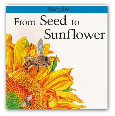 From Seed to Sunflower   -     By: Gerald Legg