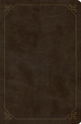 ESV Compact Bible, TruTone Imitation Leather, Olive with Frame Design  -