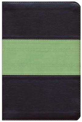 ESV Study Bible, Personal Size, TruTone Imitation Leather, Charcoal/Sage, Trail Design  -