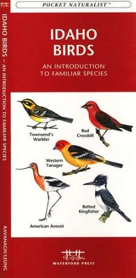Idaho Birds   -