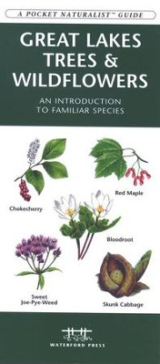 Great Lakes Trees & Wildflowers   -