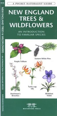 New England Trees & Wildflowers   -