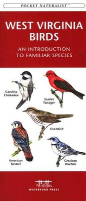 West Virginia Birds   -