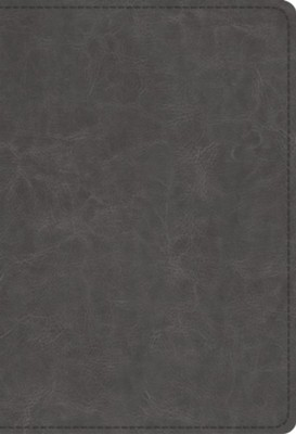 ESV Student Study Bible (TruTone, Gray), Leather, imitation, Grey  -