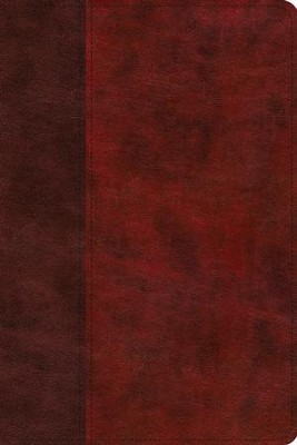 ESV Story of Redemption Bible: A Journey through the Unfolding Promises of God (TruTone, Burgundy/Red, Timeless Design)  -