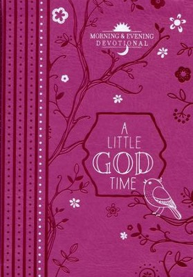A Little God Time: Morning & Evening Devotional  -