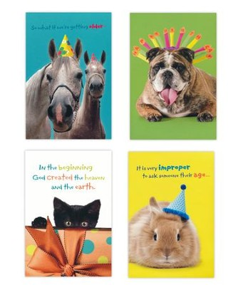 Birthday Humor, Pets Cards, Box of 12  -