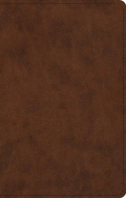 ESV UltraThin Bible, TruTone, Brown  -
