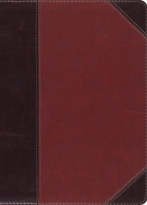 ESV MacArthur Study Bible (TruTone Imitation Leather, Brown/Cordovan, Portfolio Design)  -