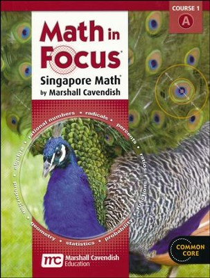 Math in Focus Grade 6 Course 1 Student Book A   -