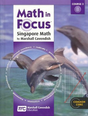 Math in Focus Grade 8 Student Edition Volume B   -