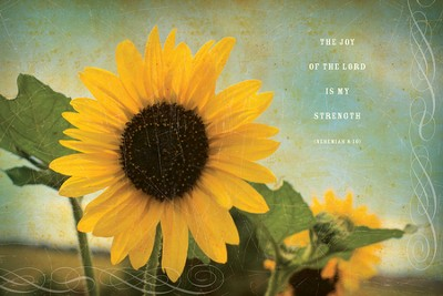 The Joy of the Lord Plaque, Large  -     By: Julie Chen