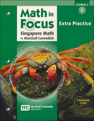 Math in Focus Grade 7 Course 2 Extra Practice B   -