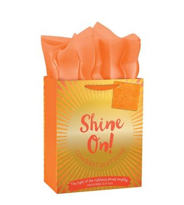 Shine On Gift Bag, Medium  -