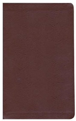 Biblia de Estudio Reina Valera 1909, Piel Elaborada Marrón   (RV 1909 Study Bible, Bonded Leather, Brown)  -