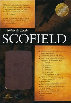 Biblia de Estudio Scofield RVR 1960, Piel Imit. Marrón  (RVR 1960 Scofield Study Bible, Imit. Leather Brown)  -