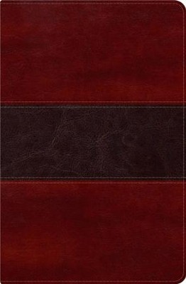 Biblia del Pescador, Simil Piel de Lujo Caoba  (RVR 1960 Fisher of Men Bible, Mahogany Deluxe Leather)  -