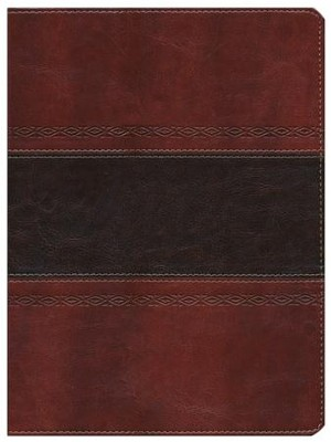 HCSB Apologetics Study Bible, Mahogany Simulated Leather, Indexed  -