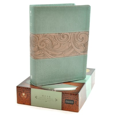 HCSB Study Bible, Teal/taupe soft leather-look, indexed  -