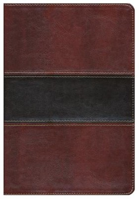 HCSB UltraThin Reference Bible, Mahogany LeatherTouch, Indexed  -