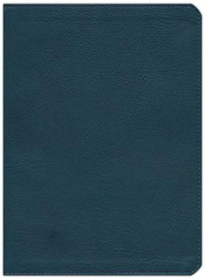 KJV Study Bible, Slate Blue LeatherTouch  -