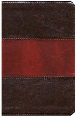 KJV UltraThin Reference Bible, Saddle Brown LeatherTouch  -