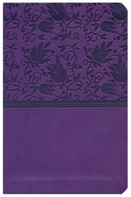 HCSB Compact Ultrathin Bible, Purple LeatherTouch  -