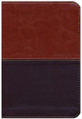 HCSB Compact Ultrathin Bible, Brown and Tan LeatherTouch  -