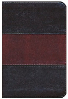 HCSB Compact Ultrathin Bible, Saddlebrown LeatherTouch  -