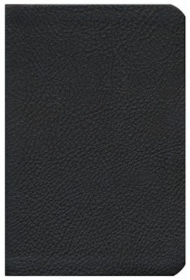 HCSB Compact Ultrathin Bible, Brown Genuine Cowhide  -