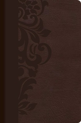 Biblia de estudio para mujeres RVR 1960, simil piel cafe con indice (Study Bible for Women, Brown LeatherTouch with Index)  -     By: Dorothy Kelley Patterson