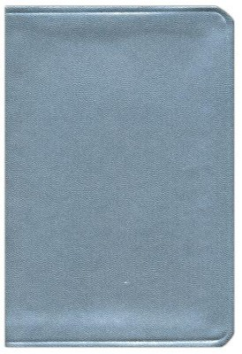 HCSB Large Print Compact ColorMax Bible, Silver LeatherTouch  -