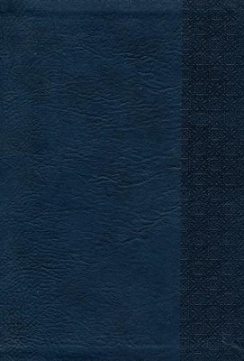 KJV Large Print UltraThin Reference Bible, Slate Blue Imitation Leather, Thumb-Indexed  -