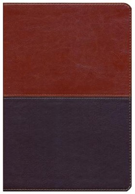 HCSB Super Giant Print Reference Bible, Brown and Tan LeatherTouch  -