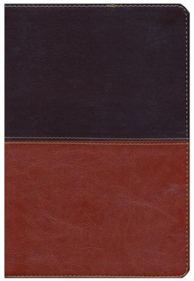 HCSB Giant Print Reference Bible, Brown and Tan LeatherTouch, Thumb-Indexed  -